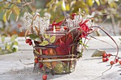 Preserving jar as lantern with colorful leaves, miscanthus