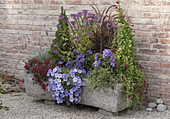 Planted stone trough on gravel terrace