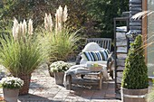 Autumn terrace with grasses Cortaderia selloana in baskets