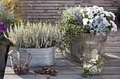 Calluna Garden Girls 'Helena' in zinc tub, chrysanthemum