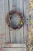 Autumn wreath made of Parthenocissus (wild wine) tendrils