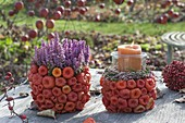 Pots covered with Physalis as a planter for Erica gracilis