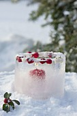 Ice lantern with frozen berries
