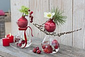 Small Advent decoration in glasses with ornamental apples (Malus) in the water
