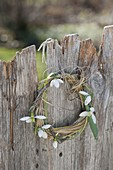 Galanthus (snowdrop), branch and grass wreath