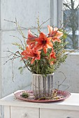 Winter bouquet with Amaryllis (Hippeastrum) and branches