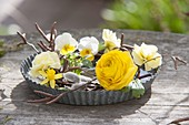 Yellow spring wreath on baking pan, birch branches, ranunculus