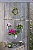 Spring flowers hanged as mobile on branch with moss wreath