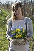 Woman with birch box with Primula acaulis, Elatior (primrose)