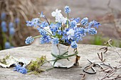 Small bouquet of muscari and scilla on table