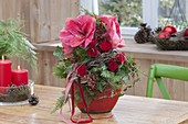 Christmas bouquet of Hippeastrum, rose, rosehips