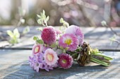 Small bouquet from Bellis, Hyacinthus (Hyacinth)