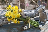 Narcissus 'Tete A Tete' (Daffodil) bouquet on log