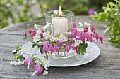Romantic lantern with dicentra flowers