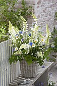 Rural bouquet made of lupinus (lupine), leucanthemum vulgare