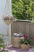 Macrame flower basket with calibrachoa hula 'Appleblossom'