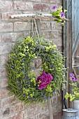Seedles of Brassica napus (rape) wreath