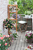 Small balcony with space-saving seating and shelf, Lantana