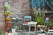 Vertical gardening saves space, Lobularia, Calibrachoa