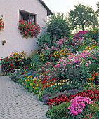 House with various annual plants