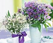 Centaurea montana (Cornflower) Gysophila (Gypsophila)