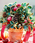 Advent bouquet with olive branches, apples, pines