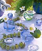 Festive table with Helleborus (Christmas rose)