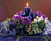 Advent wreath with Saintpaulia (African Violet)