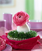 Duck egg as a vase with flower of Ranunculus asiaticus