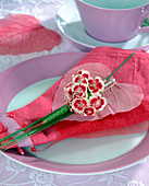 Napkin decoration with Dianthus barbatus (Barnacle)