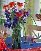 Delphinium hybrid (Larkspur), Papaver rhoeas (Corn poppy)