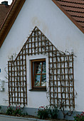 Wooden trellis attached as a climbing frame to the house wall