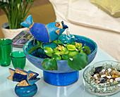 Fish as a fountain with Eichhornia (Water Hyacinth)