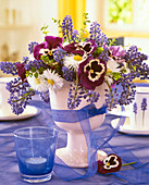 Viola (pansy), Bellis (daisies), Muscari (grape hyacinth)
