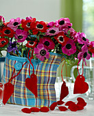 Vase with anemone coronaria (crown anemone) in bag
