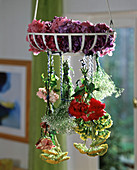 Flowers drying, hanging upside down, roses, Achillea