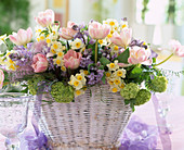 Basket with foil, Tulipa 'Angelique', Narcissus hybrid