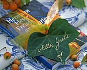 Hedera (ivy), Malus (ornamental apple)