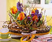 Tulipa 'Flair' (Tulip), Hyacinthus orientalis (Hyacinth), Viola