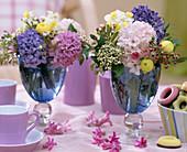 Hyacinthus (Hyacinth), Viburnum tinus (Laurel Snowball)