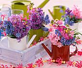 Hyacinthus (hyacinth), Muscari (grape hyacinth), Erysimum