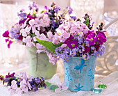 Hesperis (night violet), Aubrieta (blue cushion), Myosotis