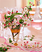 Malus (apple blossom) in gold rim cup and crystal bowl