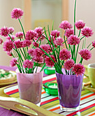 Allium schoenoprasum (chive blossoms) in glasses