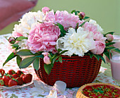 Paeonia (white and pink peonies) in the basket