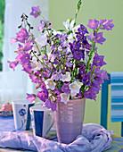 Campanula persicifolia (bellflower), Delphinium (larkspur)