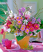 Erigeron (fine beam), campanula (bellflower), alchemilla