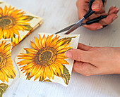 Napkin Technique, Sunflower