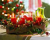 Ilex, Viscum, Euphorbia spinosa, red candles