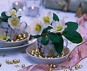 Helleborus niger in Christmas cups, golden balls, cups